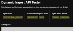 Dynamic Ingest API テスター
